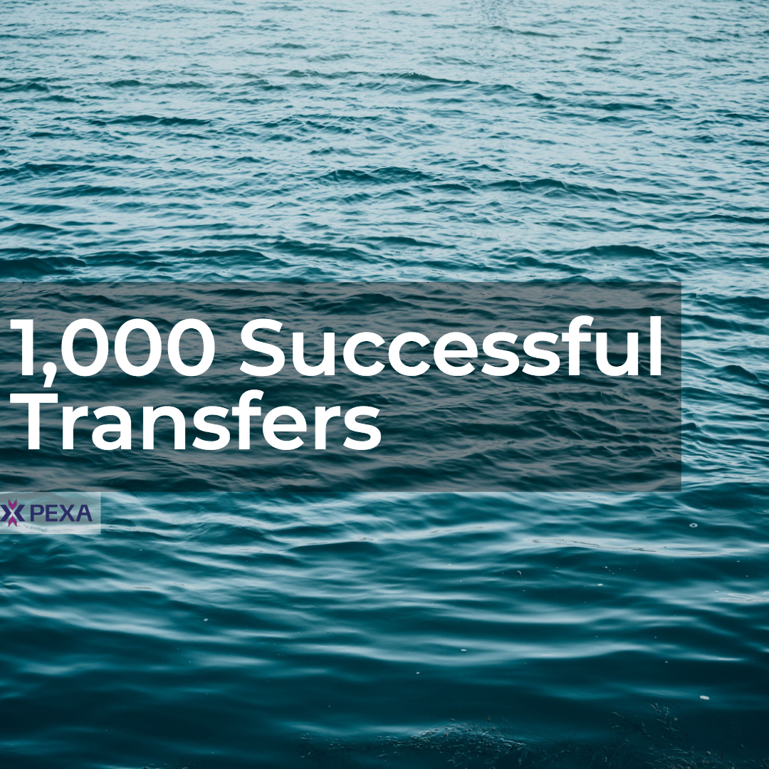 1000 transfers