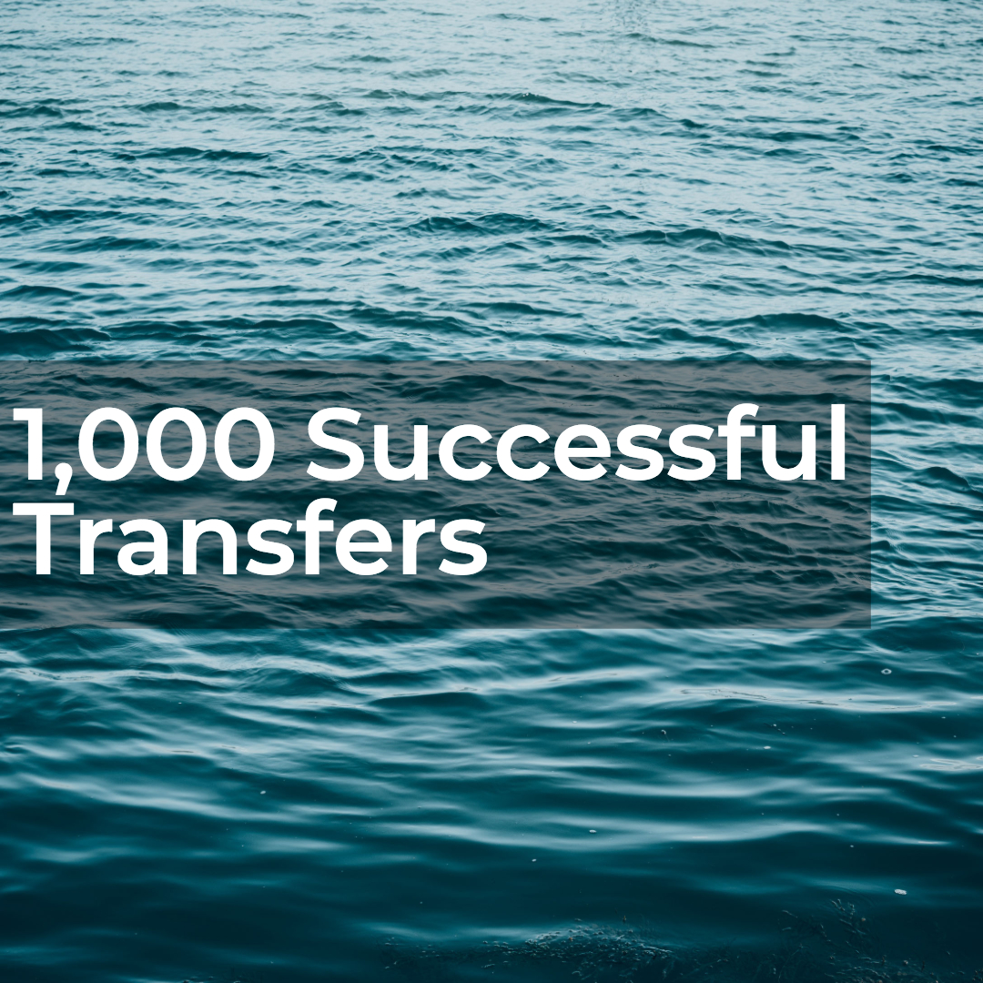 1000 successful transfers